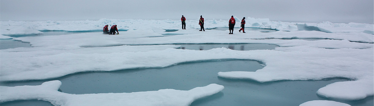Sea ice reflects 50 to 70 percent of solar radiation while the open ocean reflects only 6 percent, according to the National Snow & Ice Data Center. National Snow & Ice Data Center