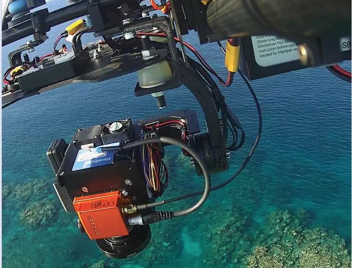 Hyper Reef