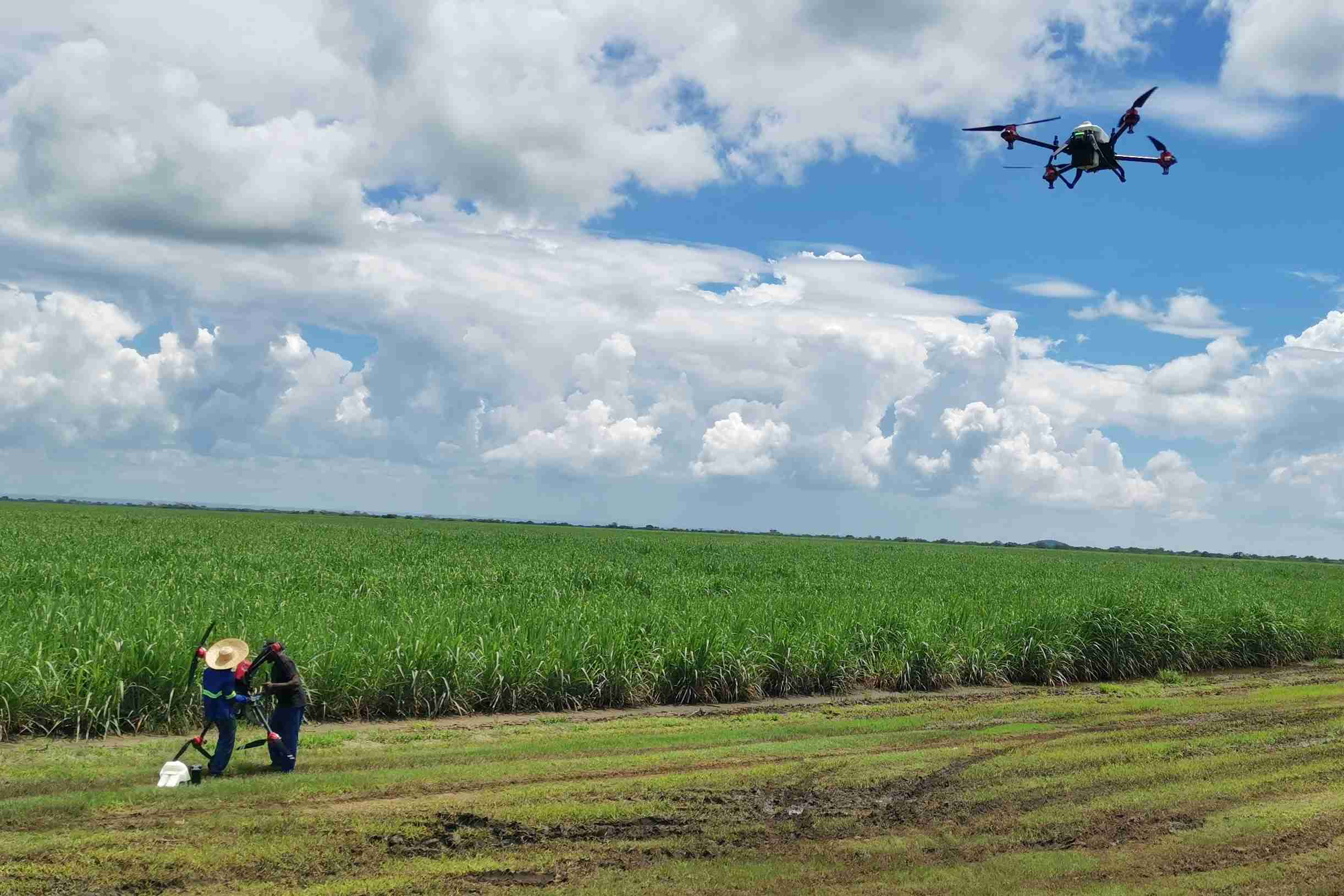 XAG Agricultural Drone conducted unmanned spraying operation in Zambia.